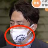 小泉進次郎のマスクは横須賀!売ってる場所はどこ?値段はいくら?